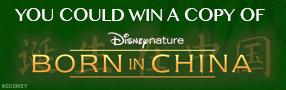 Born In China Blu-ray contest Contest